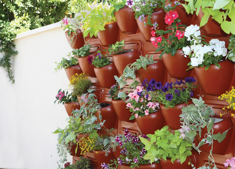 Plantscape TERRA